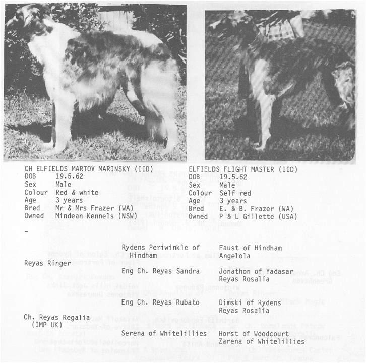 Elfield's Flight Master, CD from Australian pedigree book